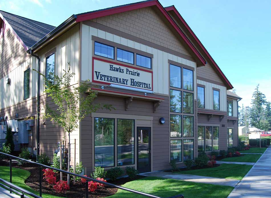 hawks prairie vet hospital exterior 2 - architectural services firm longview wa designs buildings